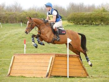 TALENTED, CLASSY HORSE WITH SCOPE TO GO FAR