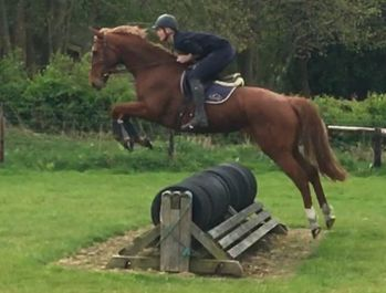CLEVER, TALENTED EVENTER