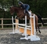 UNBELIEVABLE TALENT, TOP SJ/EVENT PROSPECT for sale