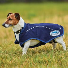 Weatherbeeta - 1200D Exercise Dog Coat