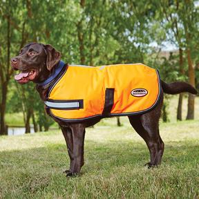 Weatherbeeta - Reflective Parka 300D Dog Rug - Orange