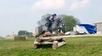 6 year-old - All Rounder - Gelding - Oxfordshire