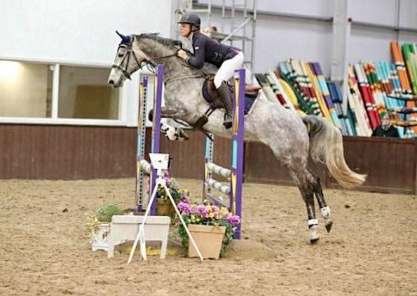 BELLE IS A SHOWJUMP / EVENT PROSPECT