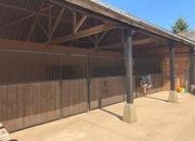 GB Equestrian Centre