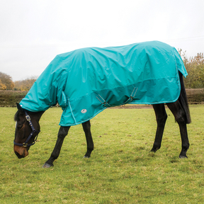 Jumpers Horse Line - Essential Lightweight Extra Combo Turnout