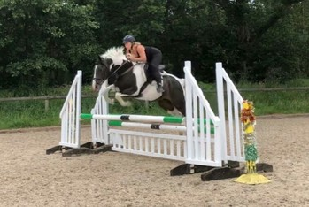 Scopey talented mare