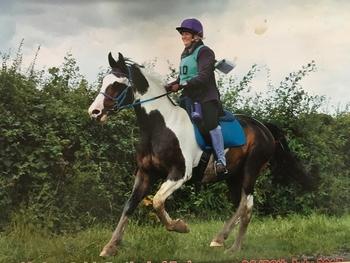 PBA endurance horse