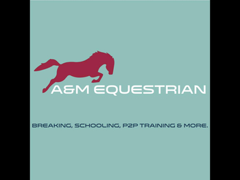 Breaking, schooling and problem horses