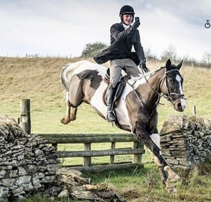 Captain is a flashy 8 year old 16.2 Hunter with great BS/BE potential