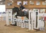 Smart Pony Mare