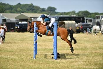 Fantastic all rounder pony!