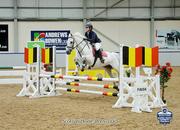 Safe 148 Showjumping/Pony Club Connemara
