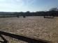 DIY livery yard in Balcombe, Nr Haywards Heath /Summer grazing  for sale