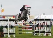 1.50m Grand Prix Stallion