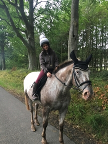 Safe hacking mare