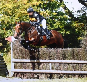 Superb Eventing Pony