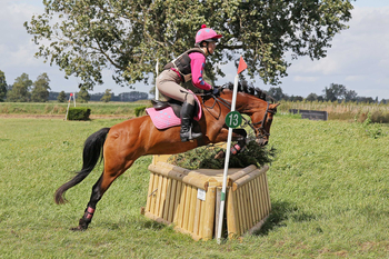 Superstar all-rounder who excels at jumping