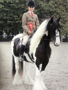 Top Class Traditional Mare