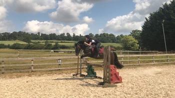 Fun jumping pony for full loan