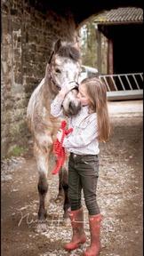 Fantastic family pony