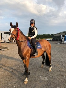 FREYA   14.3hh Bay Mare All Rounder 9 yr old