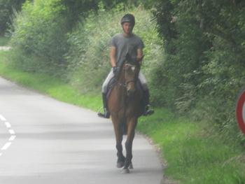 HAPPY HACKER / FUN HORSE............. REDUCED