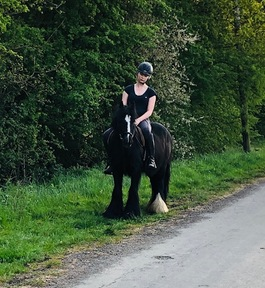 The Perfect Children's Cob - 13.2hh 11year Black Cob
