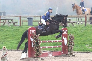 Beautiful black competition gelding for part loan