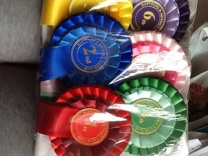 TOP QUALITY ROSETTES