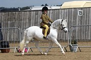 Top class lead rein or second year first ridden
