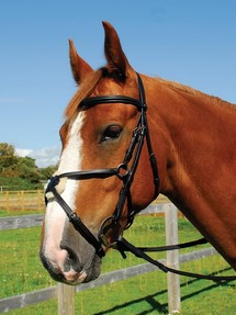 Heritage English Leather Pony Bridle With Mexican Grackle Noseband