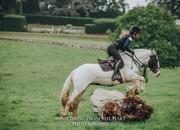 Lovely Piebald mare