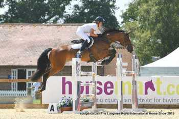 Athletic Showjumping Mare