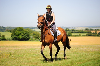 Trixie – stunning 6 year old, 16.1hh, well bred KPWN ready for the season.