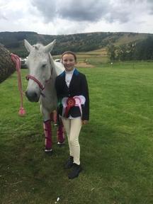 Beautiful 14 hh Connemara pony