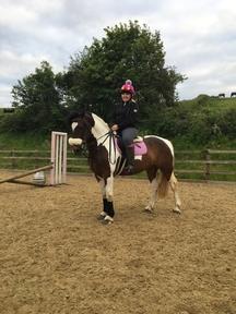 Stunning 14'2 coloured mare