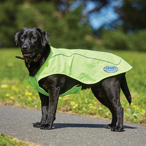 Weatherbeeta - Reflective Exercise Dog Rug