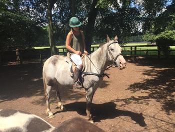 14'3 Spotty Ponies