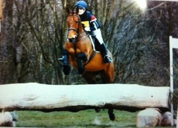 16 hands schoolmaster ex eventing mare   SORRY NOW SOLD