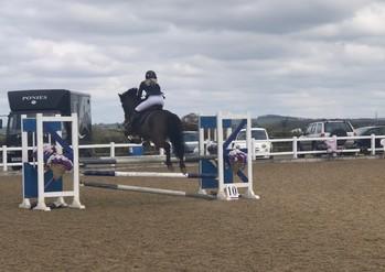 148 dream showjumping pony
