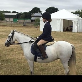 Superb first pony for sale