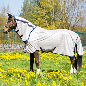 Mio - Fly Rug