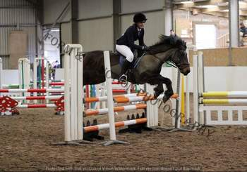 13.2hh 14yrs  New Forest competitive jumping pony