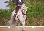 Just OMG!!! White Unicorn