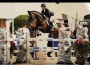 Top 5yr Old Showjumper