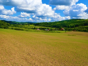 Land For Sale for sale in Herefordshire