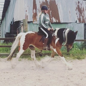15h cob allrounder / happy hacker