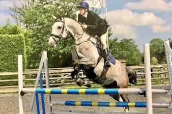 BLUEBERRY (17H) - LOVES TO JUMP/DRESSAGE