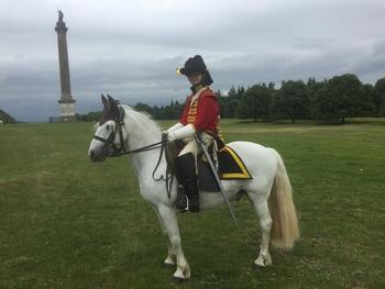 Connemara Cross Pony
