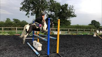Hunting jumping pony ( competed by 9yo girl )